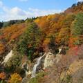 26.10.29面白山高原の紅葉