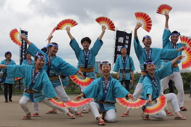 29.7.29仙台城跡仙台すずめ踊り演舞(その3)