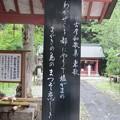 Photos: 29.8.5「古今和歌集」東歌