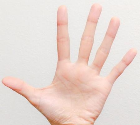 左手の指の形1 東京・中野・練馬・江古田、ヴァイオリン・ヴィオラ・音楽教室