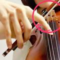 Photos: ピッチカート5 東京・中野・練馬・江古田、ヴァイオリン・ヴィオラ・音楽教室