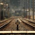 写真: 線路はどこまでも続いているのでしょうか?
