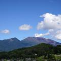 夏姿の浅間山