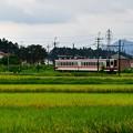 Photos: 野岩鉄道は龍王峡駅方面へ