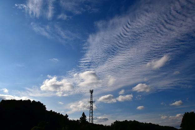 写真: 秋の空