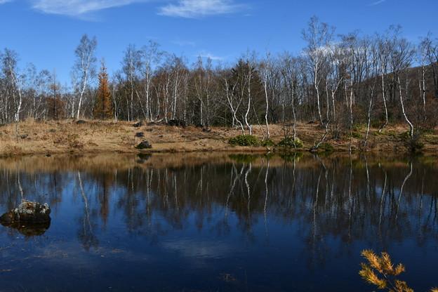 写真: まいめの池