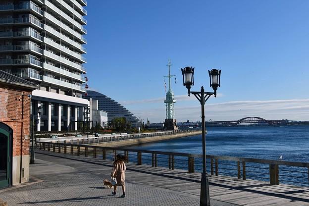 写真: 港の朝