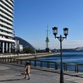 Photos: 港の朝