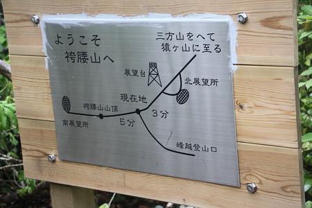 170604袴腰山 3完