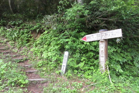 170624ブナオ峠-奈良岳 1