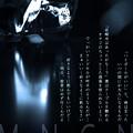 写真: MONOCON