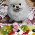 Photos: のん 3歳