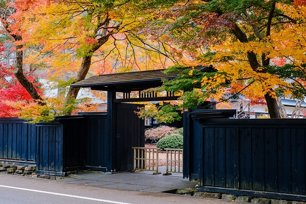 Maple & Samurai House