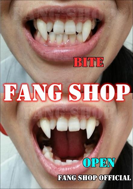 FANG SHOP 付け牙 N-2148