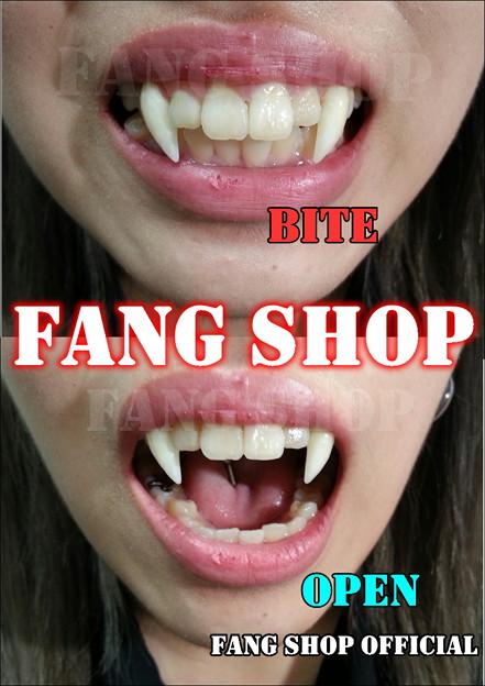 FANG SHOP 付け牙 N-2150