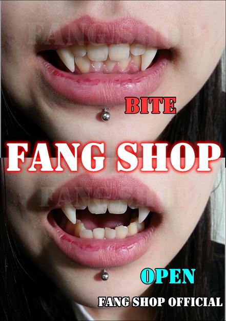 FANG SHOP 付け牙 N-2152