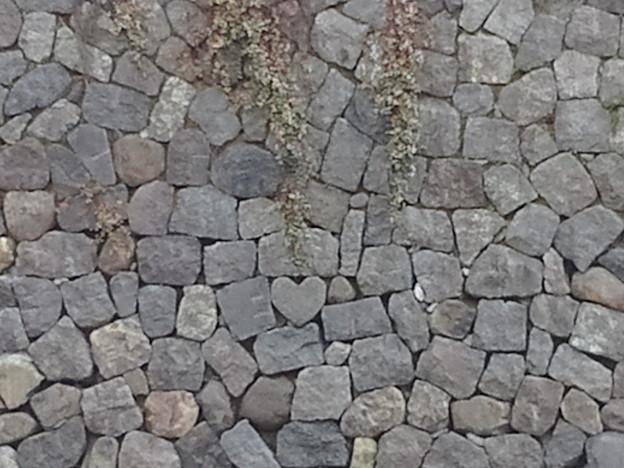 【12734号】ハート石 平成291118 #NPS