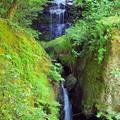 龍蔵寺 鼓の滝
