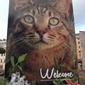 Photos: ローマの??0118