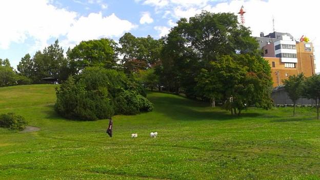 平岸高台公園2