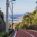Photos: 三宅島ライド----海沿いサイクリング